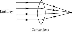 Get to know about Light (Ncert / Cbse Solutions & Revision Notes), Chapter Summary\, CBSE / NCERT Revision Notes, CBSE NCERT Class VI (7th) | Science, CBSE NCERT Solved Question Answer, CBSE NCERT Solution.